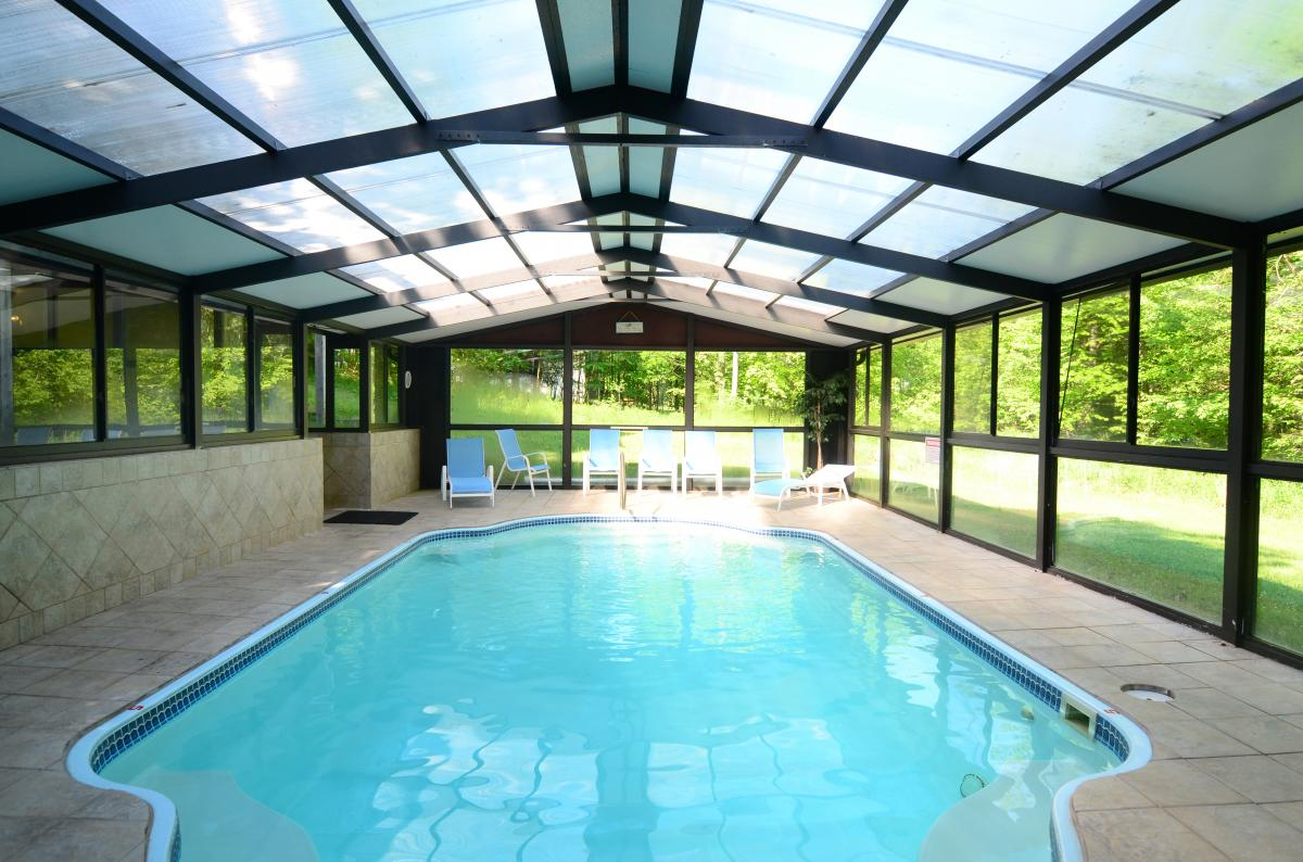 """Indoor pool with a """"green house"""" feel"""