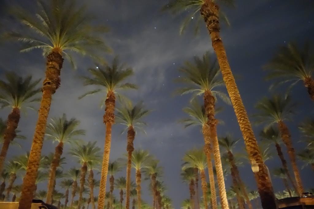 Palm Springs & AZ Pit Stop (2/13/2016 – 2/17/2016)