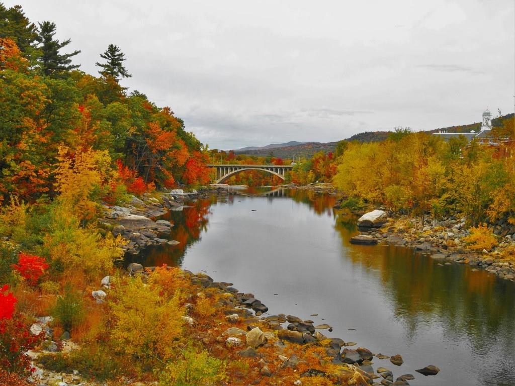 Fall in Maine and the Surrounding Northeast Area (9/15 – 10/20)
