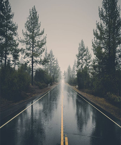 A long highway is in the middle of the screen. Trees are on either side of the street. The sky is overcast.