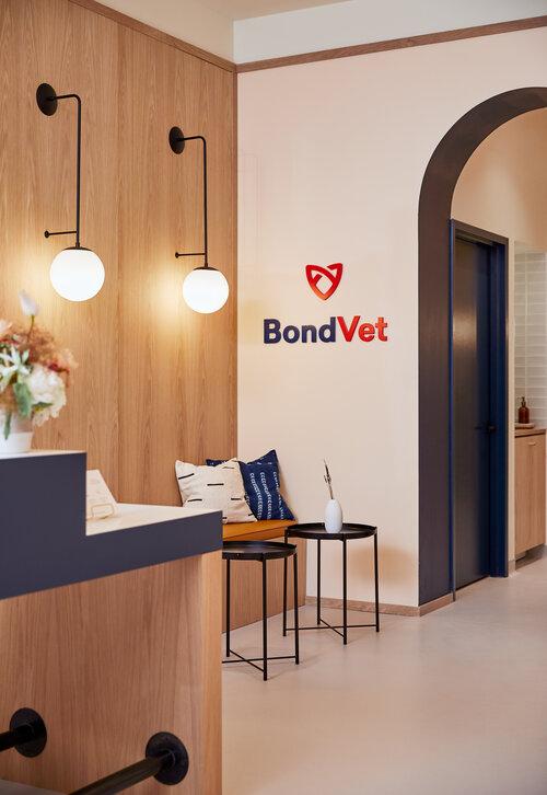 Bond Vet Islyn Studio Interior