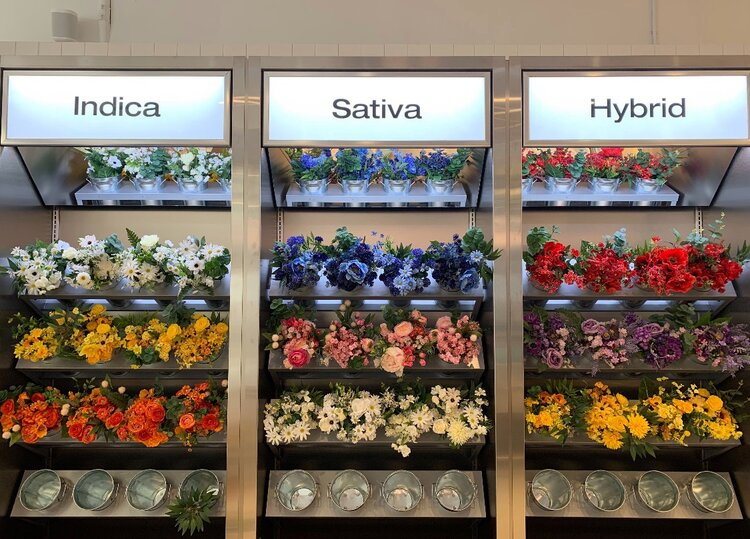 Superette interior flower display case