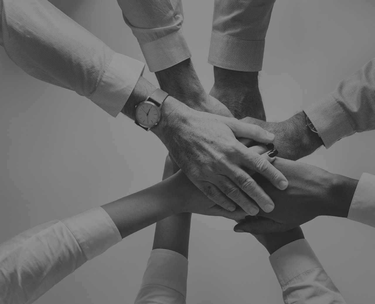 organization leaders hand on top of each