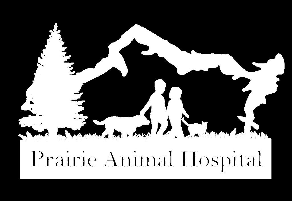 Negative Logo Transparent