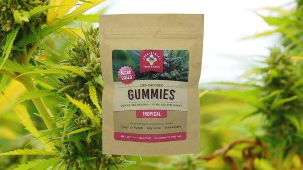 CBD Gummies Tropical Flavor 250 mg