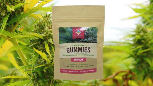 CBD Gummies Tropical Flavor