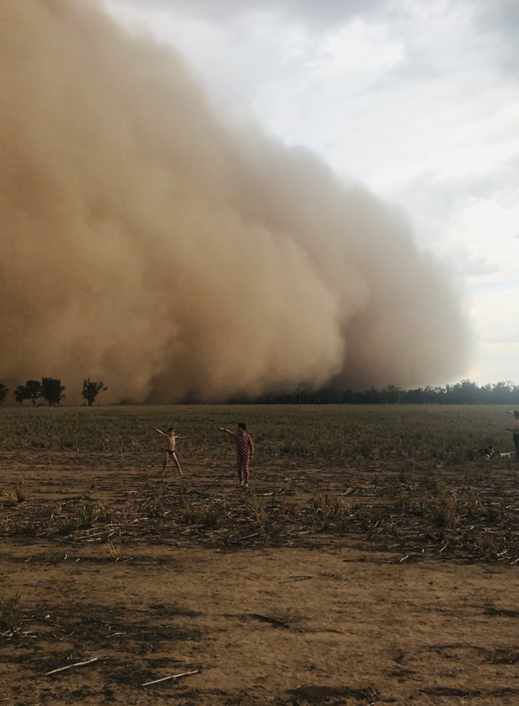 Cameron Cook_The dust storm of all dust storms_12-18