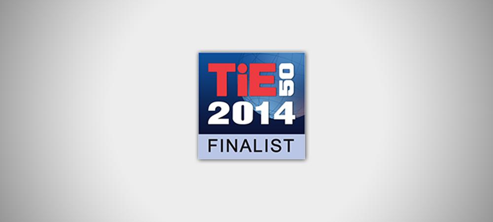 Ideapoke finalist at TiEcon 2014