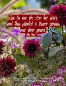 Garden 10.11.19_001