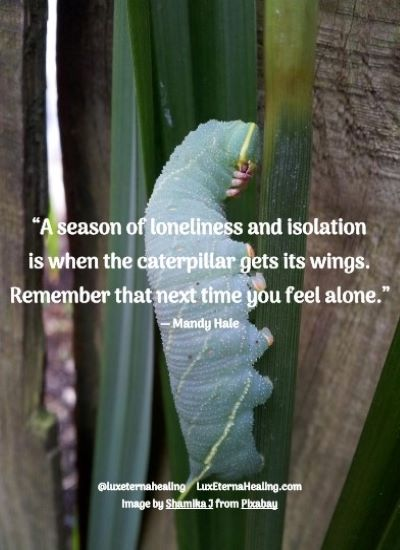 """""""A season of loneliness and isolation is when the caterpillar gets its wings. Remember that next time you feel alone."""" ― Mandy Hale"""