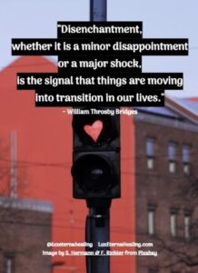 """""""Disenchantment, whether it is a minor disappointment or a major shock, is the signal that things are moving into transition in our lives."""" ~ William Throsby Bridges"""