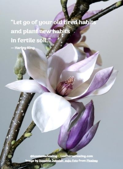 """""""Let go of your old tired habits and plant new habits in fertile soil."""" ― Harley King"""