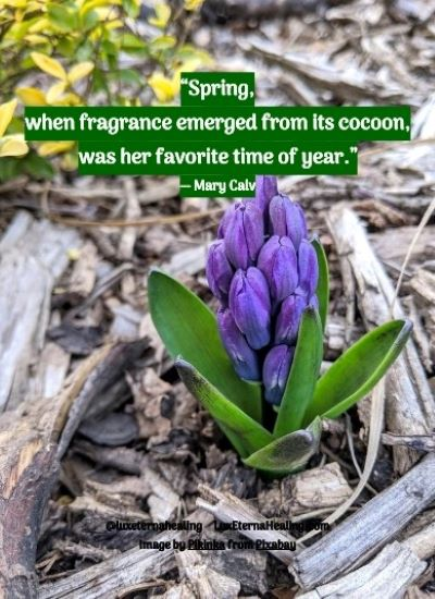"""""""Spring, when fragrance emerged from its cocoon, was her favorite time of year."""" ― Mary Calv"""