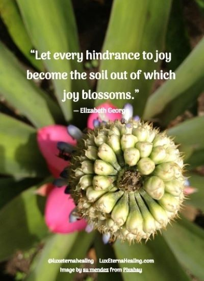 """""""Let every hindrance to joy become the soil out of which joy blossoms."""" ― Elizabeth George"""