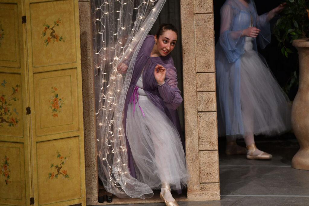 BalletUnderTheStars230