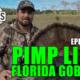 Pimp-Limp-Gobbler