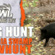 GA Hog Hunt