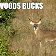 Backwoods bucks Ep 17