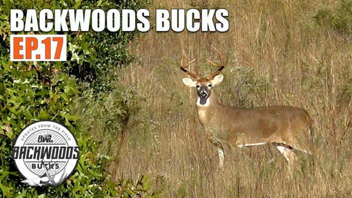 Backwoods bucks Ep 17