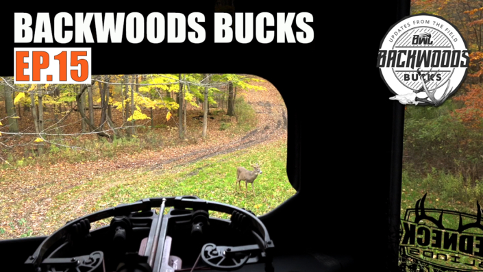 Backwoods Bucks