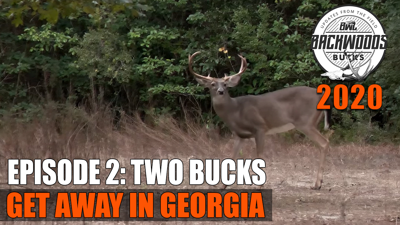 Backwoods Bucks 2020 EP 2