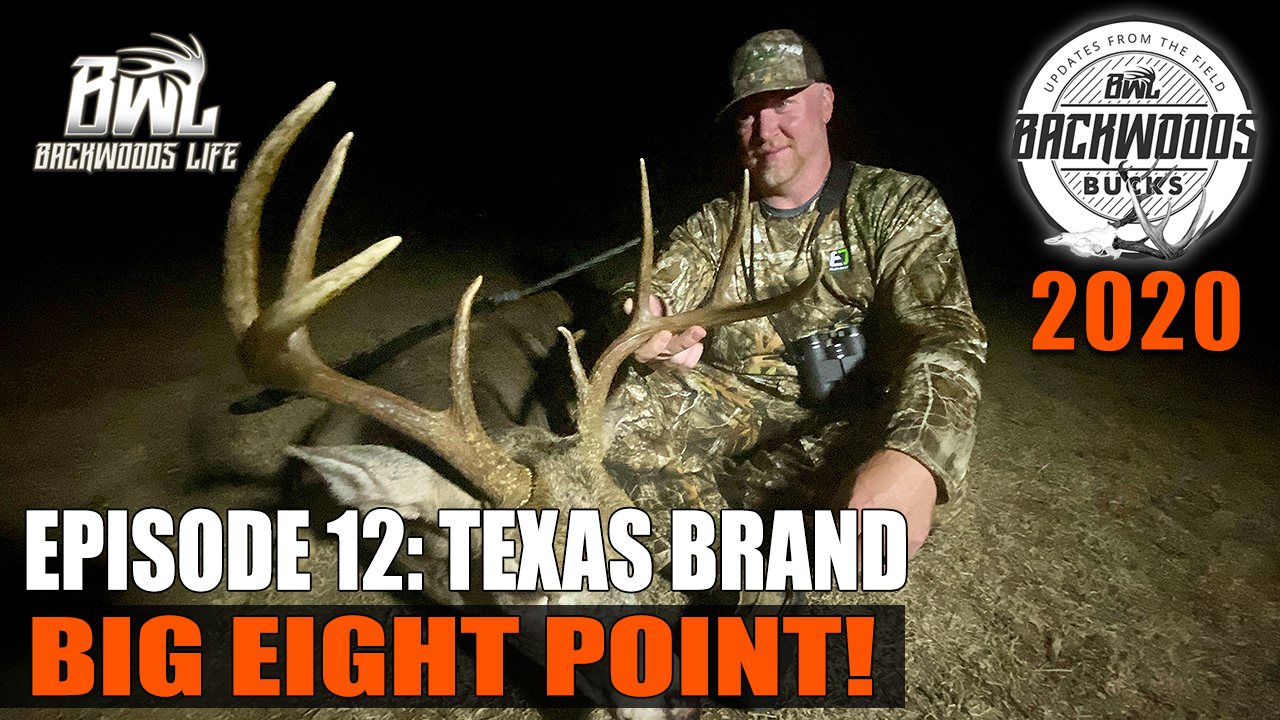 Texas Brand Eight Point