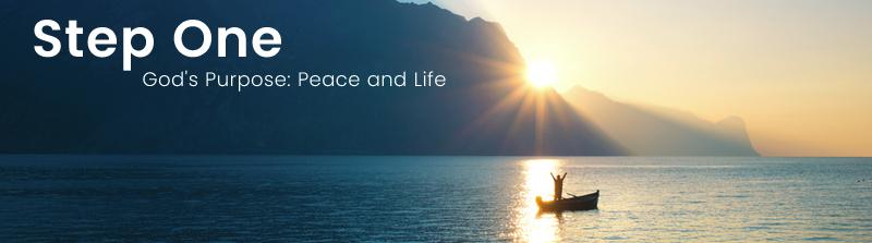 God's Purpose: Peace and Life