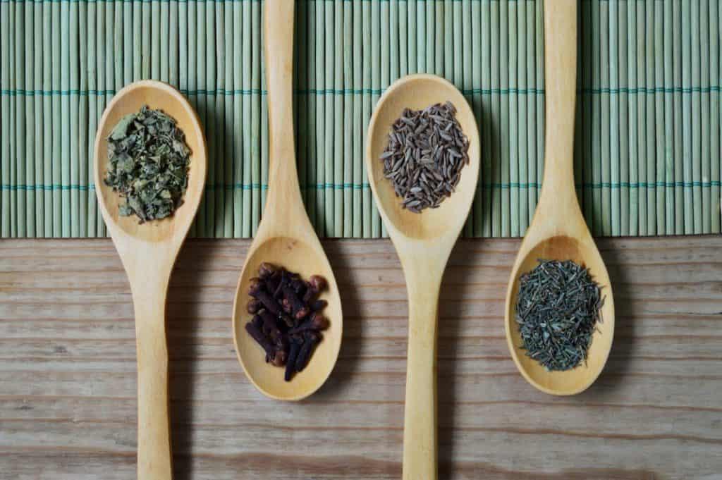 Herbs to Keep Flies Away with SIMPLE DIY hacks