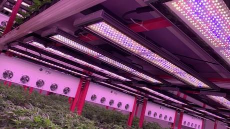 https://secureservercdn.net/72.167.241.180/hxt.99f.myftpupload.com/wp-content/uploads/2021/01/MMJ-daily-article-vert-farming.jpg?time=1634660131
