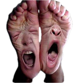 A pair of feet