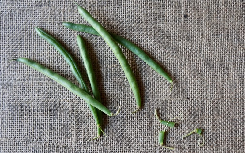 Cooking Lessons. How To Blanch Green Beans By Rebecca Gordon Buttermilk Lipstick Southern hostess Editor-in-chief southern cooking tailgating entertaining lifestyle brand pastry chef writer author food stylist tv cooking personality talent author photographer fox 6 contributor birmingham alabama