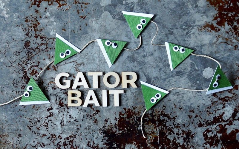 Florida Gator Football & Tailgating Bunting By Rebecca Gordon buttermilk lipstick TV Cooking Personality Editor-in-Chief Southern Tailgating, Cooking & entertaining brand Sports Entertaining Tailgating Expert Pastry Chef Author Writer Tide & Tigers Today Tailgate Host WBRC Fox 6 Birmingham Alabama Original Recipes Crafts & Tailgating Party Ideas