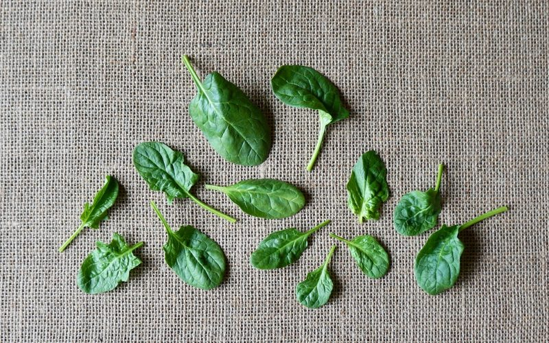 The Basics. Fresh Spinach. Rebecca Gordon Editor-In-Chief Buttermilk Lipstick Culinary & Entertaining Brand Cooking & Baking Techniques Digital Culinary Photo Journalist Food Stylist Pastry Chef Writer Editorial Director TV Cooking Personality Modern Southern Parties Spring Entertaining Easter Menus Recipes