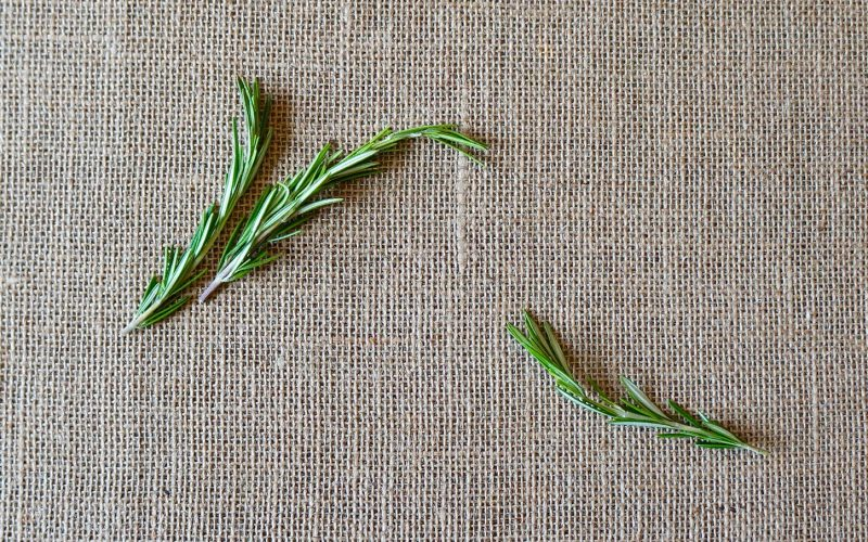 The Basics. Fresh Rosemary By Rebecca Gordon Editor-In-Chief Buttermilk Lipstick Culinary & Entertaining Brand Cooking & Baking Tutorials TV Cooking Personality Digital Culinary Photo Journalist Editorial Director Game Day Tailgating Modern Southern Socials Southern Hostess Menu Planning
