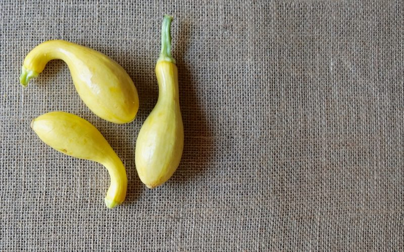 How To Boil Crookneck Yellow Squash By Rebecca Gordon Editor-In-Chief Buttermilk Lipstick Cooking & Baking Tutorials Pastry Chef TV Cooking Personality Game Day Tailgating Modern Southern Socials Party Menus Southern Entertaining Southern Hostess Birmingham Alabama