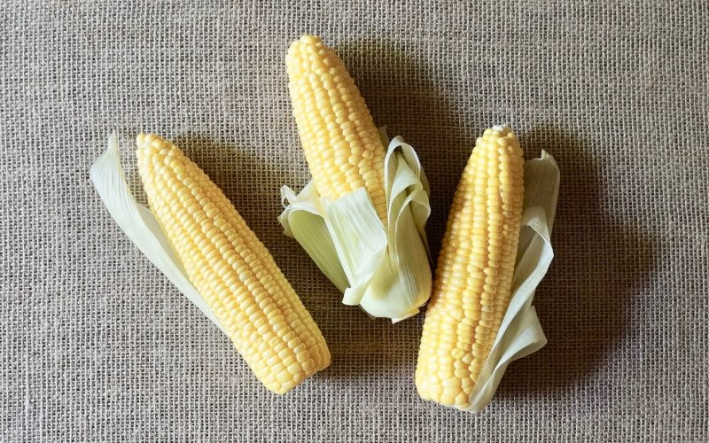 The Basics. How To Cut Corn Off The Cob By Rebecca Gordon. Sweet Corn. Buttermilk Lipstick Culinary & Entertaining Brand Cooking & Baking Tutorials TV cooking Personality Editorial Director Digital Culinary Photo Journalist Modern Southern Socials Game Day Tailgating Pastry Chef Writer Food Stylist Birmingham Alabama