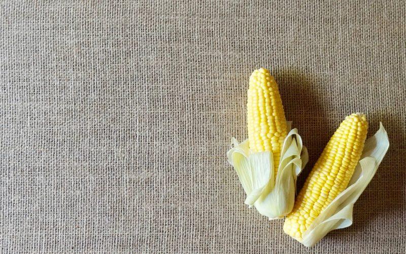 Corn-Husks-How-To-Make-Mexican-Tamales-Rebecca-Gordon-Editor-In-Chief-Buttermilk-Lipstick-Southern-Entertaining-RebeccaGordon-Southern-Hostess-Chef-Birmingham-Alabama