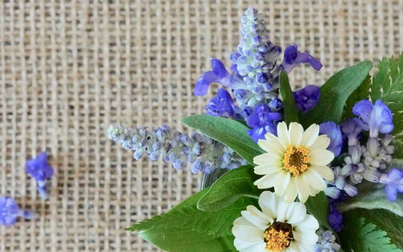 Autumn Fern-Velocity Blue Salvia-Rebecca Gordon Editor In Chief Publisher Buttermilk Lipstick-Pastry-Chef-Southern-Hostess-TV-Personality-Birmingham-Alabama