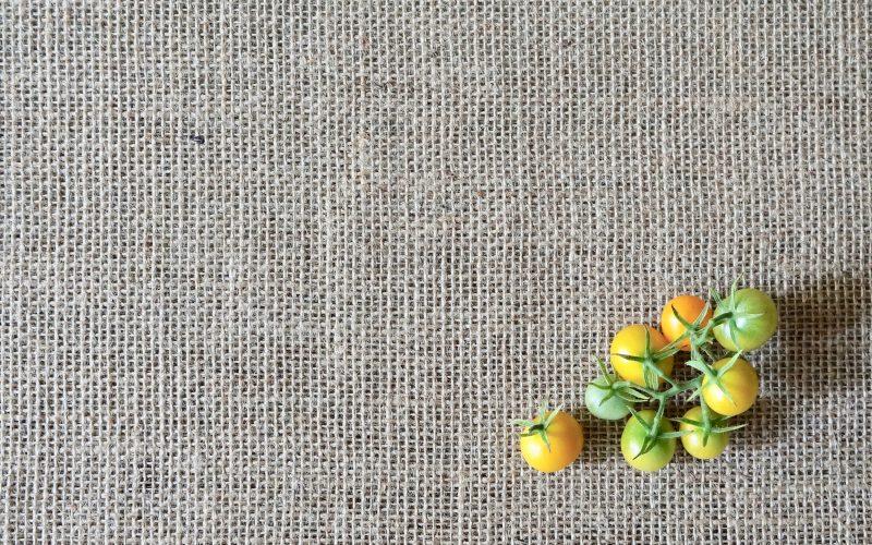 Sunsugar-Tomatoes-Rebecca-Gordon-Publisher-Buttermilk-Lipstick-Culinary-Techniques-Garden-Essentials-Sun-Sugar-RebeccaGordon-Southern-Entertaining-Pastry-Chef-Birmingham-Alabama