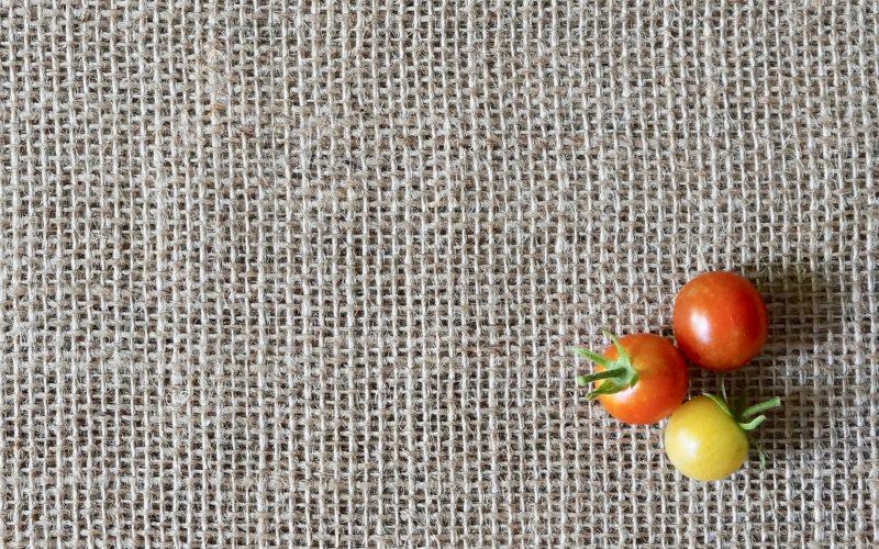 Sweet-100-Tomatoes-Rebecca-Gordon-Publisher-Buttermilk-Lipstick-Culinary-Techniques-Gardening-Cooking-Entertaining-Recipes-RebeccaGordon-Birmingham-Alabama-Chef-Gardener
