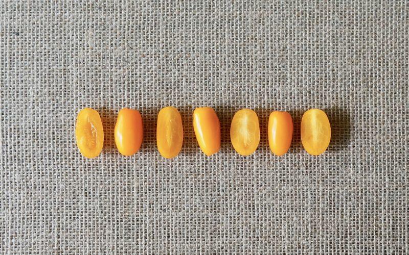 Southern-Entertaining-How-To-Grow-Nova-Grape-Tomatoes-Garden-Recipes-Rebecca-Gordon-Editor-In-Chief-Buttermilk-Lipstick-Culinary-Techniques-RebeccaGordon-Gardener-Pastry-Chef-Birmingham-Alabama