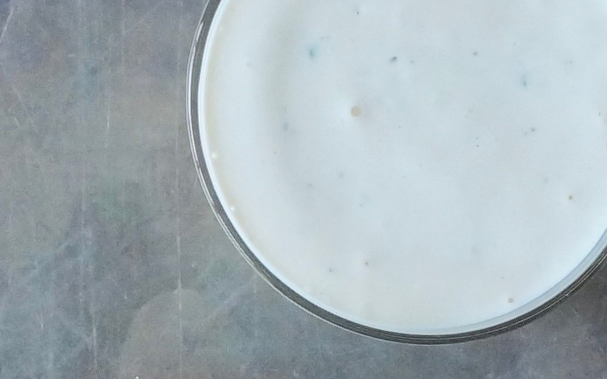 Buttermilk-Blue-Cheese-Dressing-Rebecca-Gordon-Publisher-Buttermilk-Lipstick-Culinary-Entertaining-Technique-RebeccaGordon-Southern-Hostess-Pastry-Chef-Birmingham-Alabama