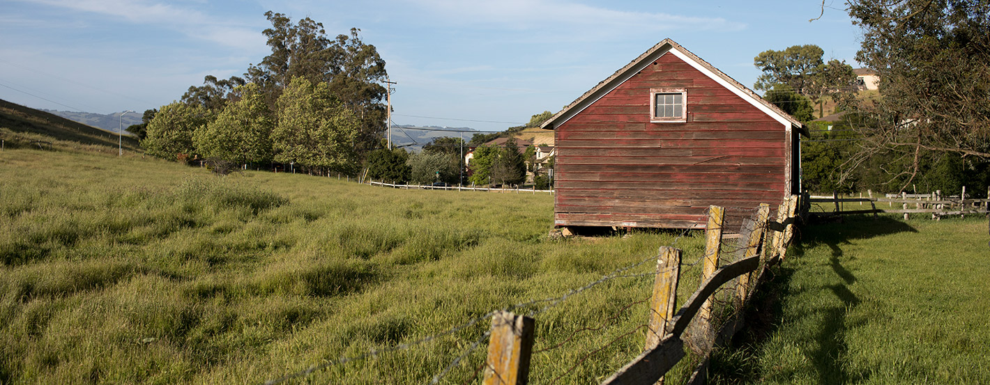 Small red wooden barn surrounded by lush green grass blowing in the wind, hills, trees, and a wire and wooden fence in the foreground.