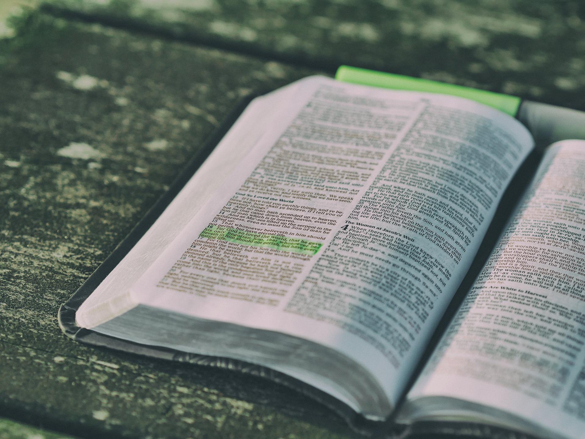 SUNDAY SCHOOL & ADULT BIBLE STUDY