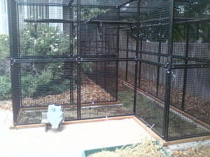 patio outside cat cage