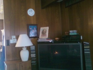Living Room wall with dark wood paneling