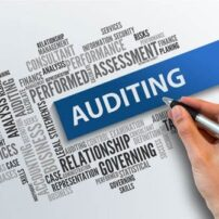 auditing-and-assurance-jpg-500x500