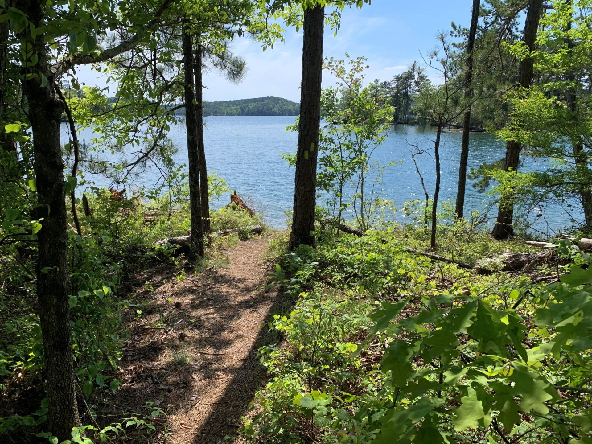 CRATA trail at Overlook Park