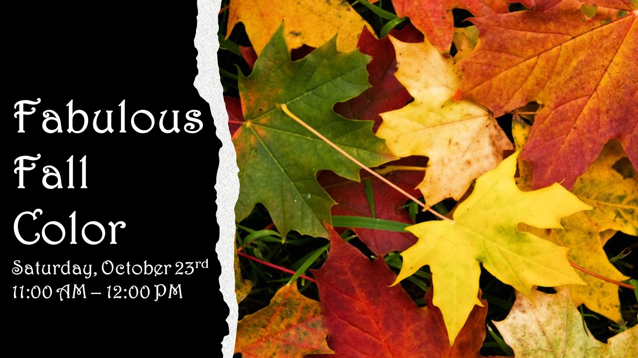 Flyer for Fabulous Fall Colors