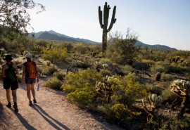 Hikers get the day started on the Gateway Loop Trail at the McDowell Sonoran Preserve. MUST CREDIT: Photo by Caitlin O'Hara for The Washington Post.